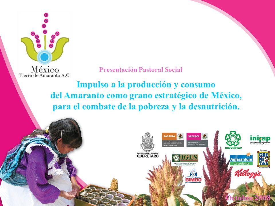 Impulso a la producción y consumo del Amaranto como grano estratégico de México, para el combate de la pobreza y la desnutrición. Octubre 2008 Present