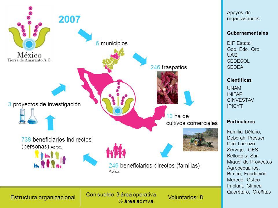 2007 6 municipios 246 traspatios 10 ha de cultivos comerciales 246 beneficiarios directos (familias) Aprox. 738 beneficiarios indirectos (personas) Ap