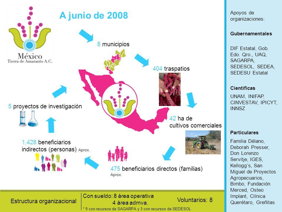 A junio de 2008 8 municipios 404 traspatios 42 ha de cultivos comerciales 475 beneficiarios directos (familias) Aprox. 1,428 beneficiarios indirectos