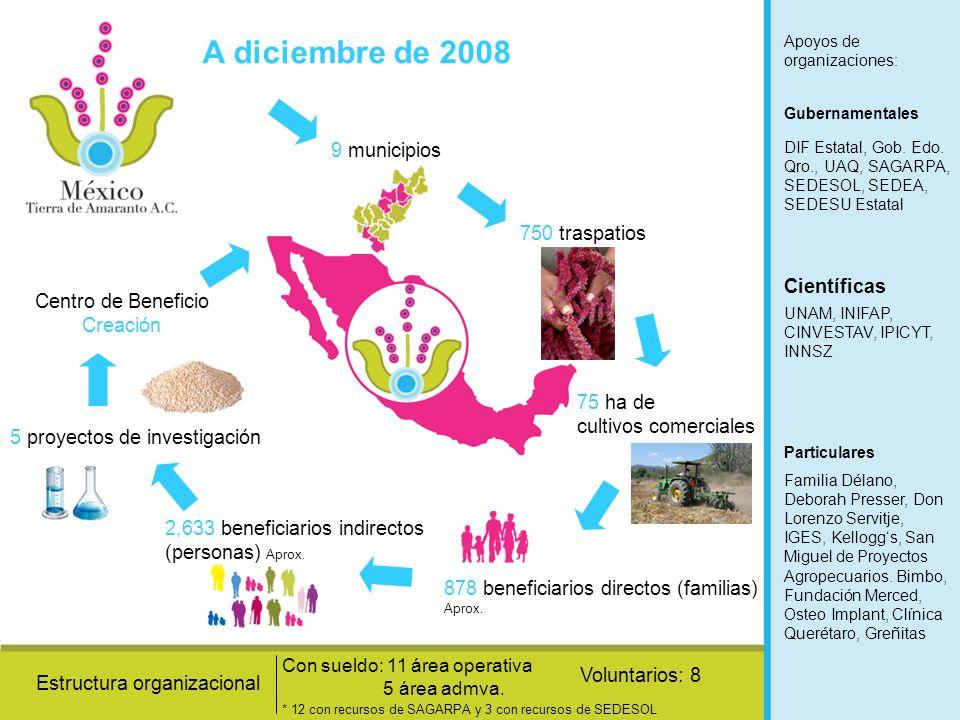 A diciembre de 2008 9 municipios 750 traspatios 75 ha de cultivos comerciales 878 beneficiarios directos (familias) Aprox. 2,633 beneficiarios indirec