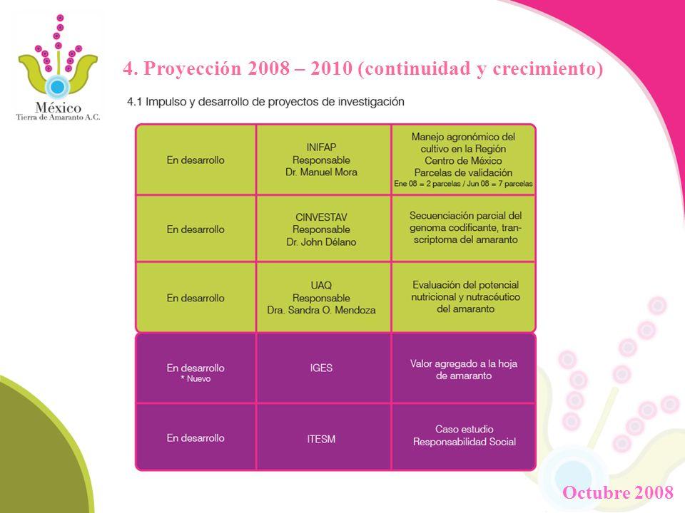 4. Proyección 2008 – 2010 (continuidad y crecimiento) Octubre 2008