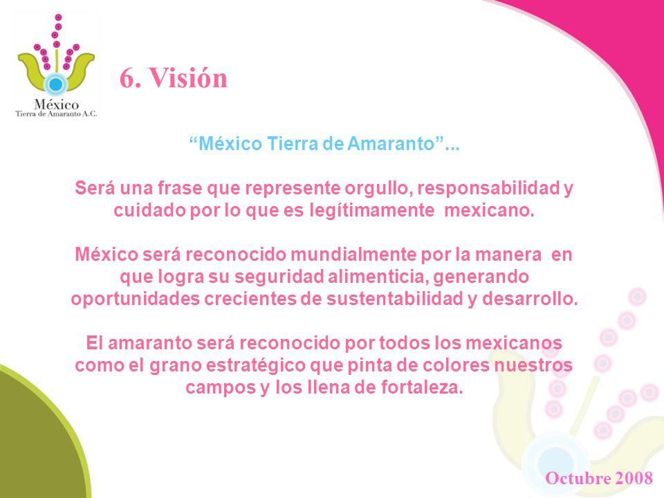 6. Visión México Tierra de Amaranto... Será una frase que represente orgullo, responsabilidad y cuidado por lo que es legítimamente mexicano. México s