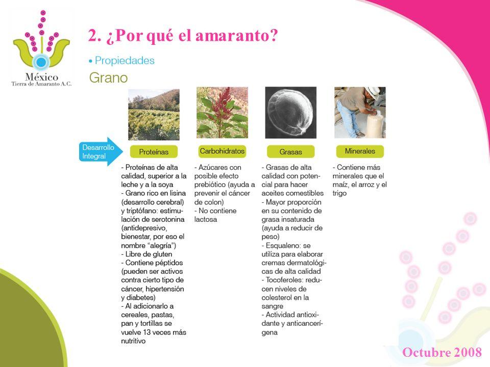 2. ¿Por qué el amaranto? Octubre 2008