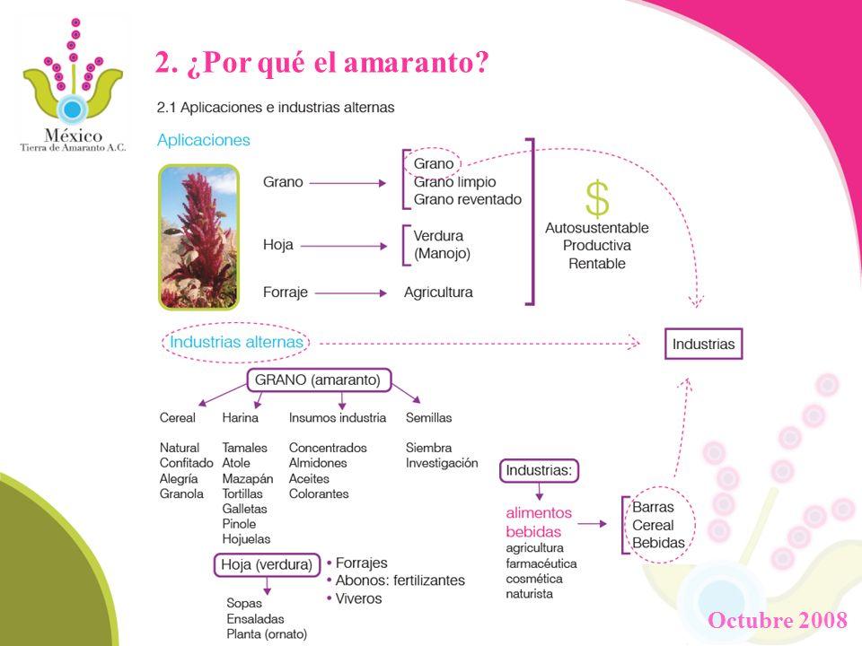 3.Objetivos Generales 2.1 Rescatar, enaltecer y difundir la cultura del amaranto en México.