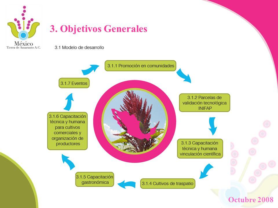 A junio de 2008 8 municipios 404 traspatios 42 ha de cultivos comerciales 475 beneficiarios directos (familias) Aprox.