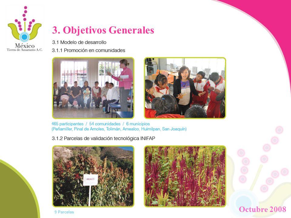 3. Objetivos Generales 9 Parcelas Octubre 2008