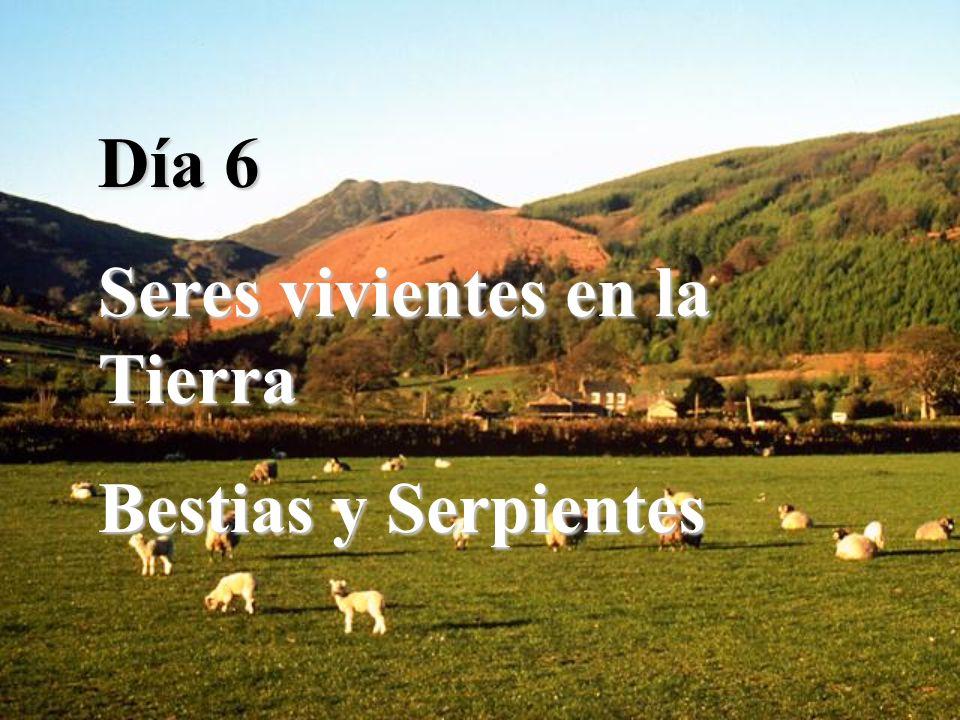 Día 6 Seres vivientes en la Tierra Bestias y Serpientes