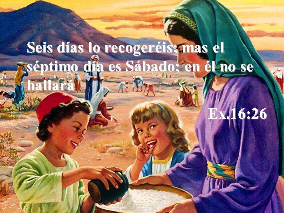 Seis días lo recogeréis; mas el séptimo día es Sábado; en él no se hallará Ex.16:26