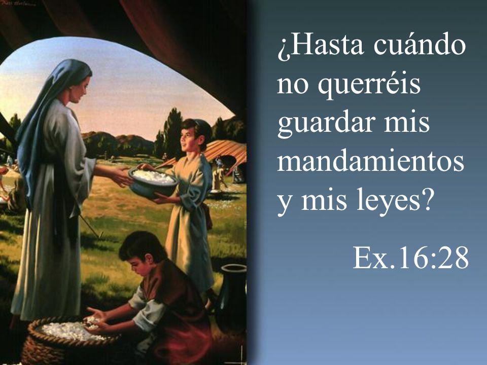 ¿Hasta cuándo no querréis guardar mis mandamientos y mis leyes? Ex.16:28