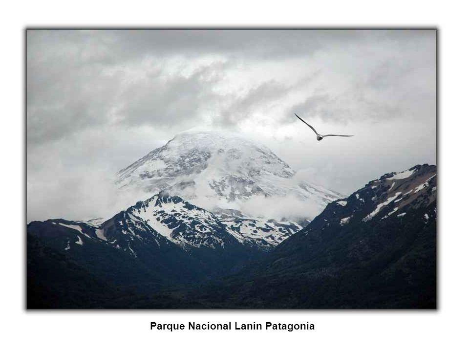Parque Nacional Nahuel Huapi Patagonia