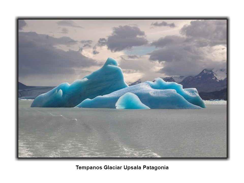 Lago Escondido Ushuaia Tierra del Fuego