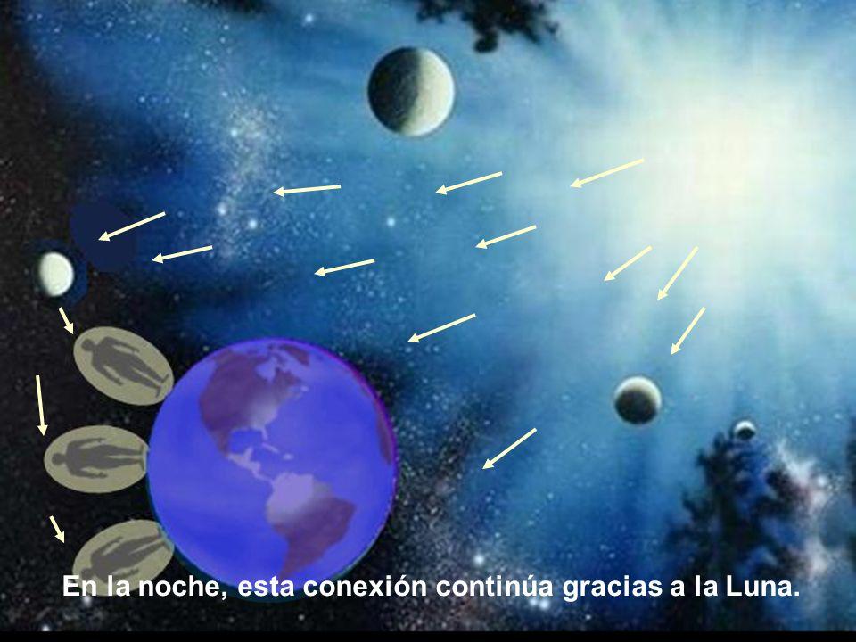 Durante el día, cada individuo recibe la energía vital directamente del Sol.