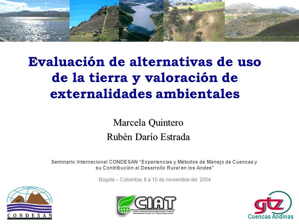 Evaluación de alternativas de uso de la tierra y valoración de externalidades ambientales Marcela Quintero Rubén Darío Estrada Cuencas Andinas Seminario Internacional CONDESAN Experiencias y Métodos de Manejo de Cuencas y su Contribución al Desarrollo Rural en los Andes Bogotá – Colombia, 8 a 10 de noviembre del 2004
