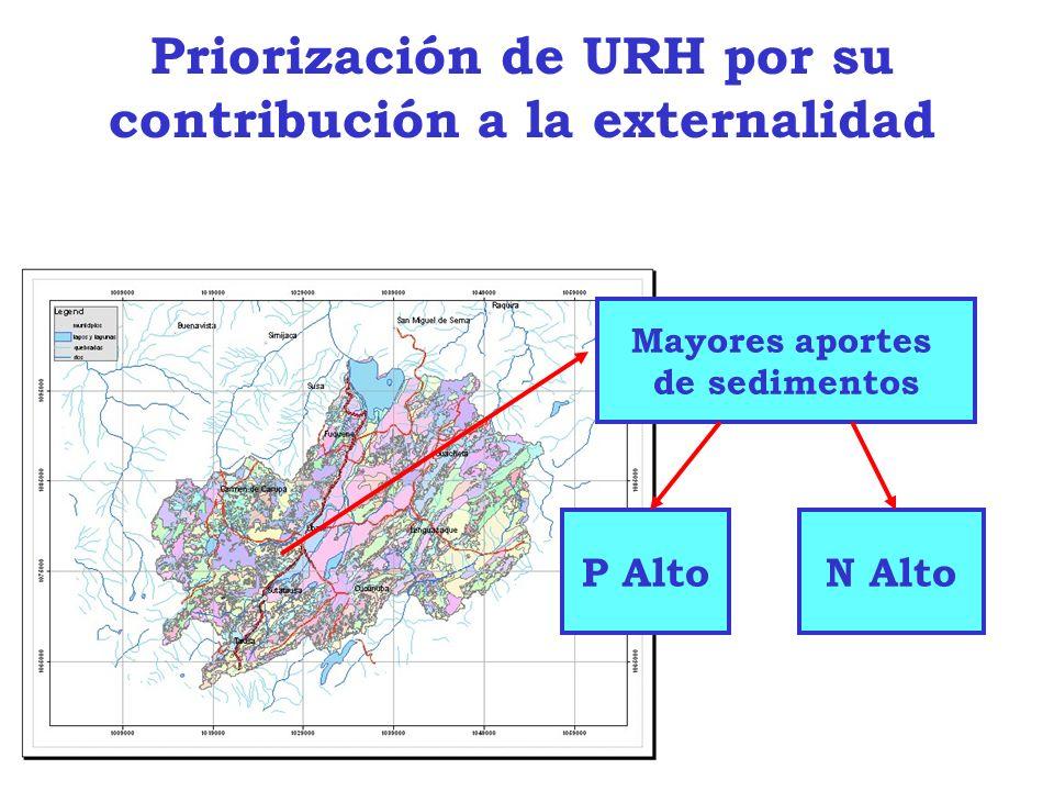 Priorización de URH por su contribución a la externalidad Mayores aportes de sedimentos P AltoN Alto