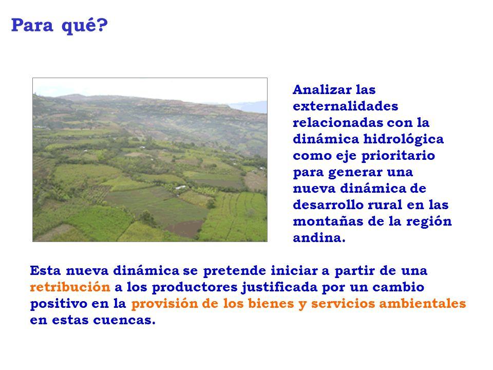 Analizar las externalidades relacionadas con la dinámica hidrológica como eje prioritario para generar una nueva dinámica de desarrollo rural en las montañas de la región andina.