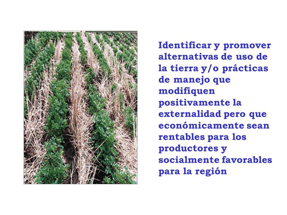 Identificar y promover alternativas de uso de la tierra y/o prácticas de manejo que modifiquen positivamente la externalidad pero que económicamente sean rentables para los productores y socialmente favorables para la región