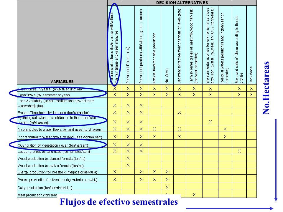 Flujos de efectivo semestrales No.Hectareas