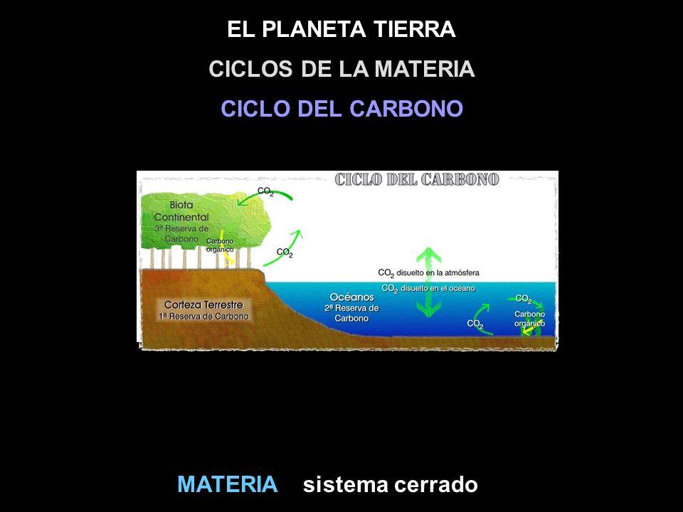 EL PLANETA TIERRA sistema cerradoMATERIA CICLOS DE LA MATERIA CICLO DEL CARBONO