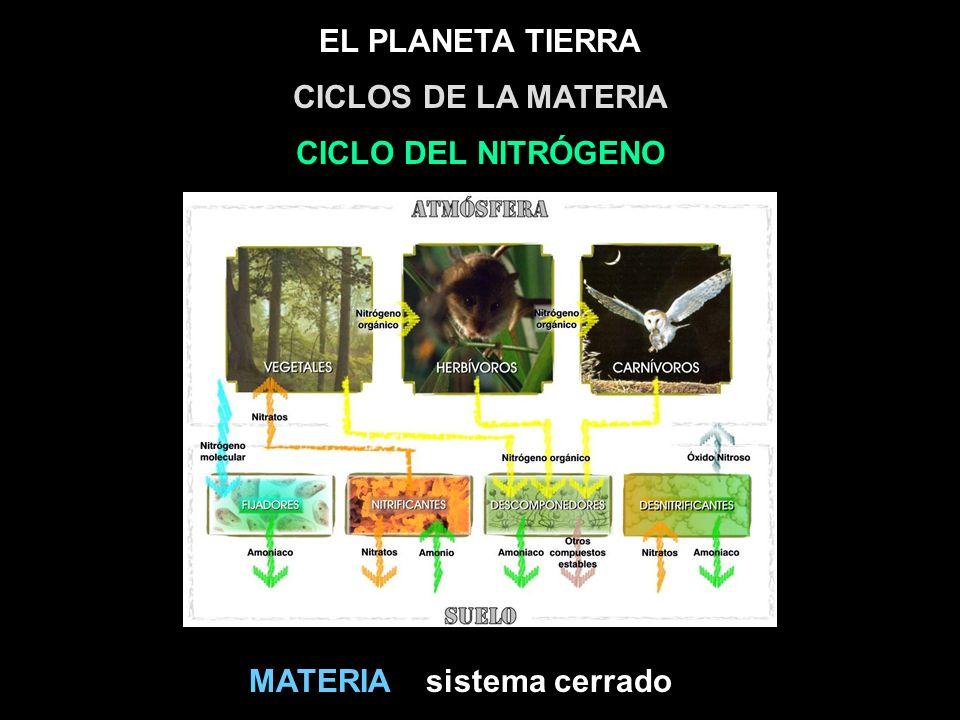 EL PLANETA TIERRA sistema cerradoMATERIA CICLOS DE LA MATERIA CICLO DEL NITRÓGENO