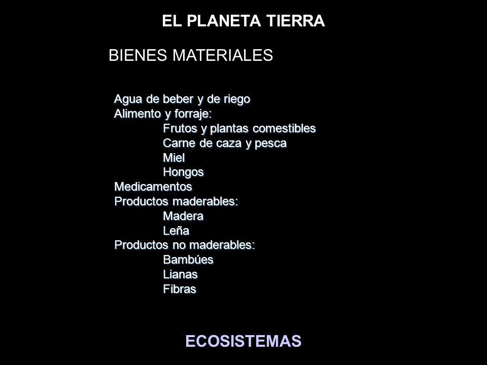EL PLANETA TIERRA ECOSISTEMAS Agua de beber y de riego Alimento y forraje: Frutos y plantas comestibles Carne de caza y pesca MielHongosMedicamentos P