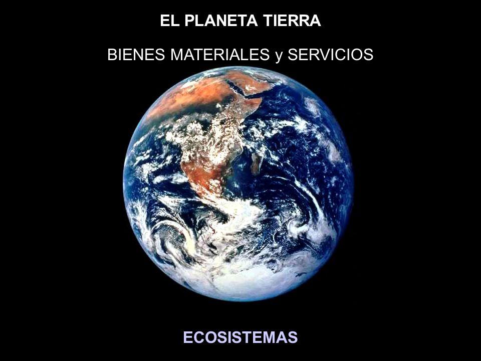 EL PLANETA TIERRA ECOSISTEMAS BIENES MATERIALES y SERVICIOS
