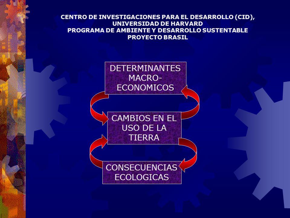 CAMBIOS EN EL USO DE LA TIERRA DETERMINANTES MACRO- ECONOMICOS CONSECUENCIAS ECOLOGICAS CENTRO DE INVESTIGACIONES PARA EL DESARROLLO (CID), UNIVERSIDAD DE HARVARD PROGRAMA DE AMBIENTE Y DESARROLLO SUSTENTABLE PROYECTO BRASIL