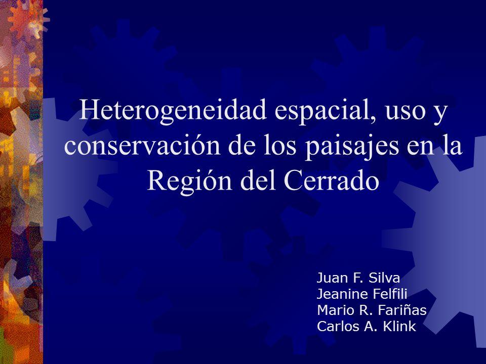 Juan F. Silva Jeanine Felfili Mario R. Fariñas Carlos A.