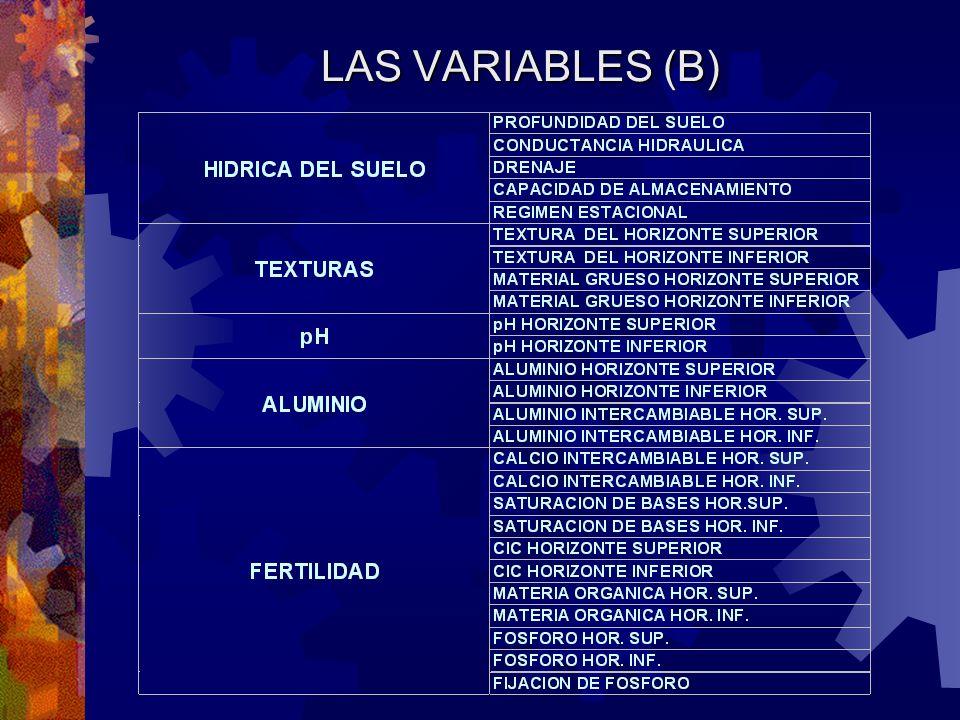 LAS VARIABLES (B)