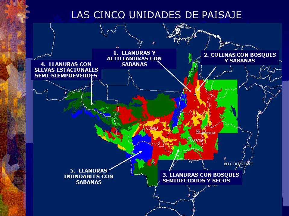 LAS CINCO UNIDADES DE PAISAJE 1.LLANURAS Y ALTILLANURAS CON SABANAS 4.