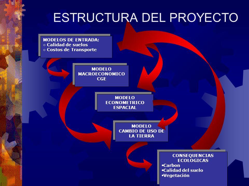 CONSEQUENCIAS ECOLOGICAS Carbon Calidad del suelo Vegetación CONSEQUENCIAS ECOLOGICAS Carbon Calidad del suelo Vegetación MODELO CAMBIO DE USO DE LA TIERRA MODELO CAMBIO DE USO DE LA TIERRA MODELO ECONOMETRICO ESPACIAL MODELO MACROECONOMICO CGE MODELO MACROECONOMICO CGE MODELOS DE ENTRADA: Calidad de suelos Costos de Transporte MODELOS DE ENTRADA: Calidad de suelos Costos de Transporte ESTRUCTURA DEL PROYECTO