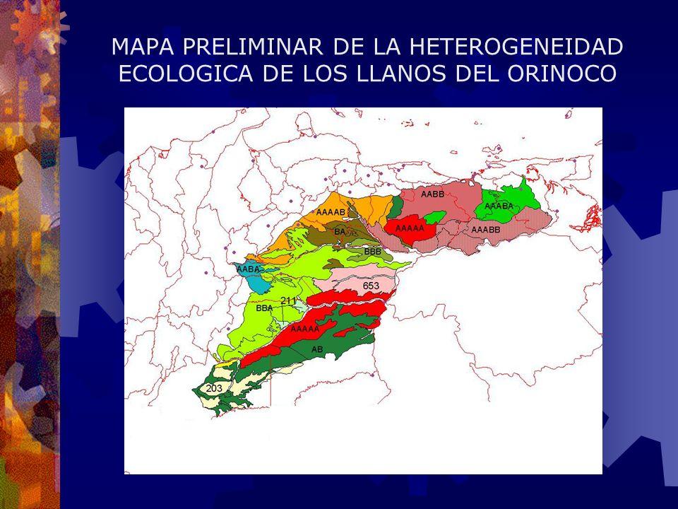 MAPA PRELIMINAR DE LA HETEROGENEIDAD ECOLOGICA DE LOS LLANOS DEL ORINOCO