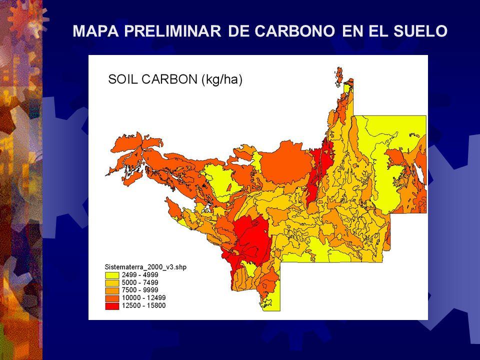 MAPA PRELIMINAR DE CARBONO EN EL SUELO