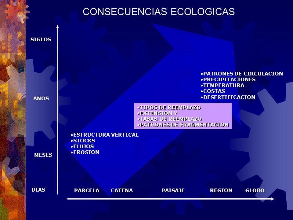 INDICADORES 1.FRACCION DEL ECOSISTEMA REMANENTE 2.TASAS DE REEMPLAZO 3.GRADO DE FRAGMENTACION 4.TAMAÑO DE BLOQUES REMANENTES 5.TASA DE FRAGMENTACION 6.DEGRADACION DEL SUELO 7.TASAS DE DEGRADACION 8.FRACCION DEL ECOSISTEMA REMANENTE BAJO PROTECCION (DINERSTEIN ET AL., 1995, PARA DEFINIR PRIORIDADES DE CONSERVACION) ENFOQUE ESPACIALMENTE EXPLICITO