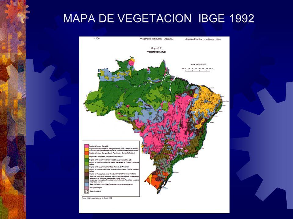 MAPA DE VEGETACION IBGE 1992