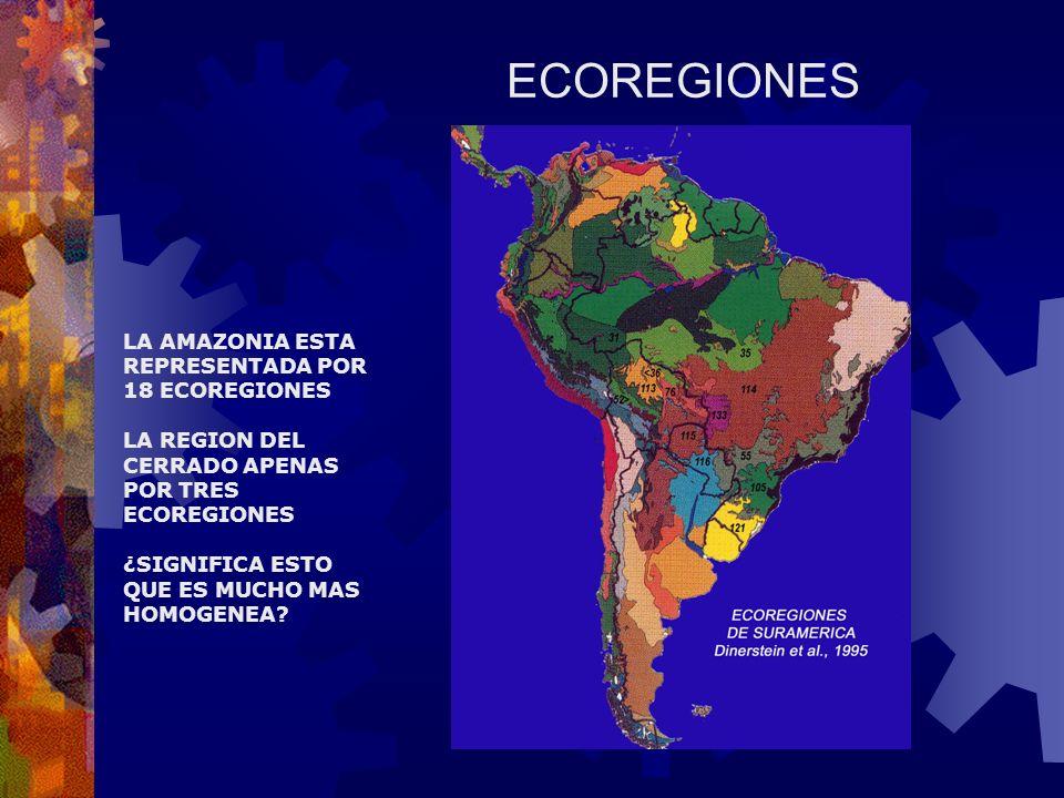 ECOREGIONES LA AMAZONIA ESTA REPRESENTADA POR 18 ECOREGIONES LA REGION DEL CERRADO APENAS POR TRES ECOREGIONES ¿SIGNIFICA ESTO QUE ES MUCHO MAS HOMOGENEA?