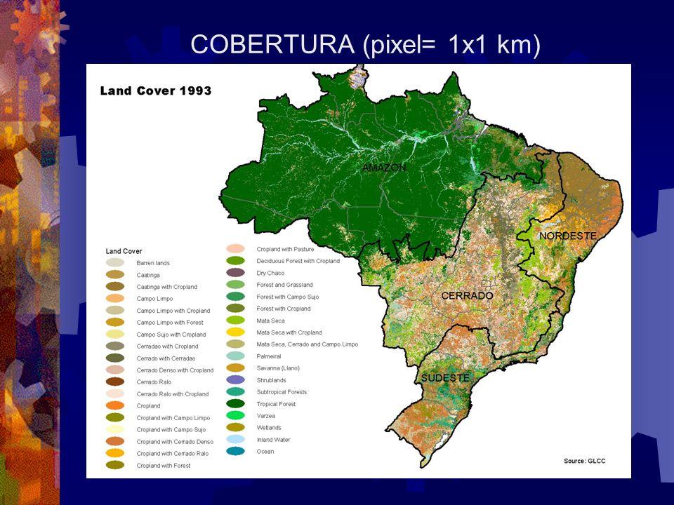 TIERRAS EN USO MAPA BASADO EN DATOS DEL CENSO MUNICIPAL DEL IBGE, 1996