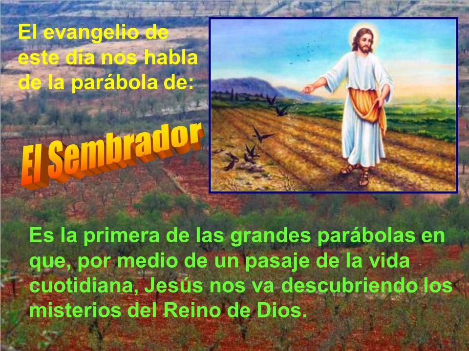 El evangelio de este día nos habla de la parábola de: Es la primera de las grandes parábolas en que, por medio de un pasaje de la vida cuotidiana, Jesús nos va descubriendo los misterios del Reino de Dios.