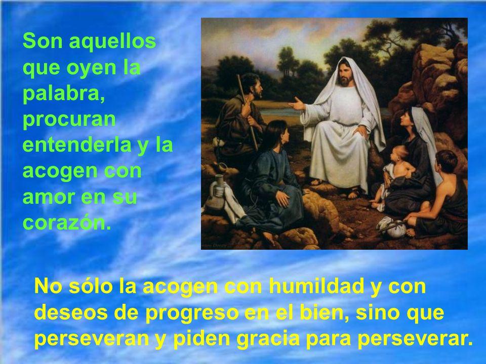 Parecería que la parábola fuese pesimista; pero la cuarta clase de tierra contrarresta a las otras y llena al corazón de Jesús. Y lo llenará más, si n