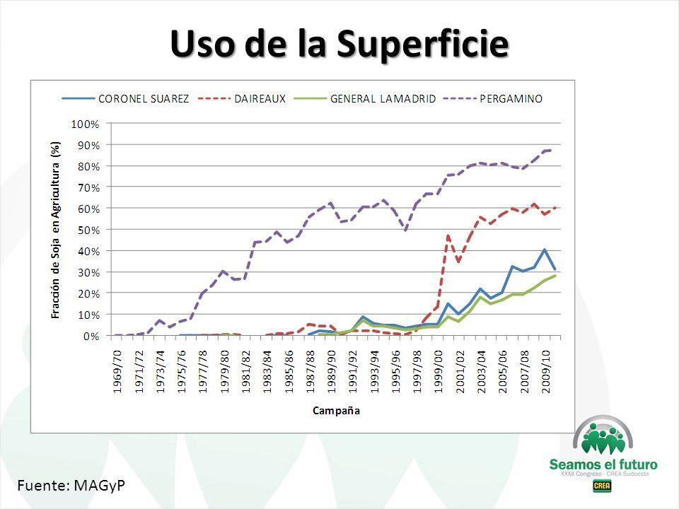 Uso de la Superficie Fuente: MAGyP