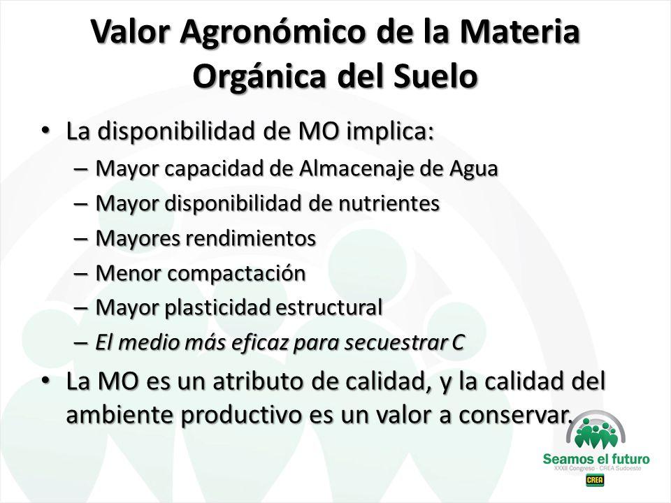 Valor Agronómico de la Materia Orgánica del Suelo La disponibilidad de MO implica: La disponibilidad de MO implica: – Mayor capacidad de Almacenaje de