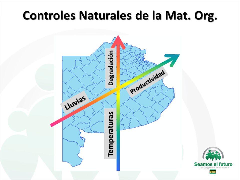 Controles Naturales de la Mat. Org. Lluvias Temperaturas Productividad Degradación