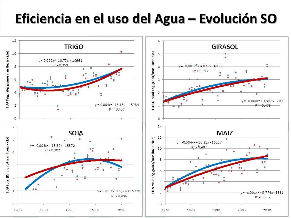 Eficiencia en el uso del Agua – Evolución SO TRIGOGIRASOL SOJAMAIZ