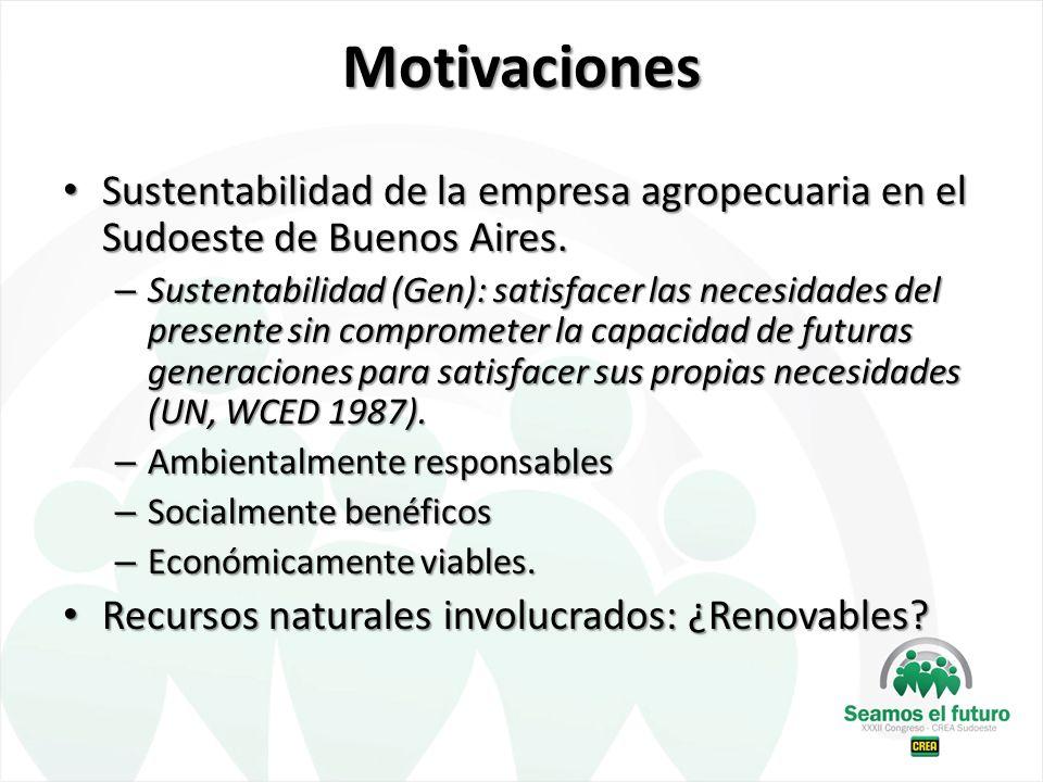 Motivaciones Sustentabilidad de la empresa agropecuaria en el Sudoeste de Buenos Aires. Sustentabilidad de la empresa agropecuaria en el Sudoeste de B