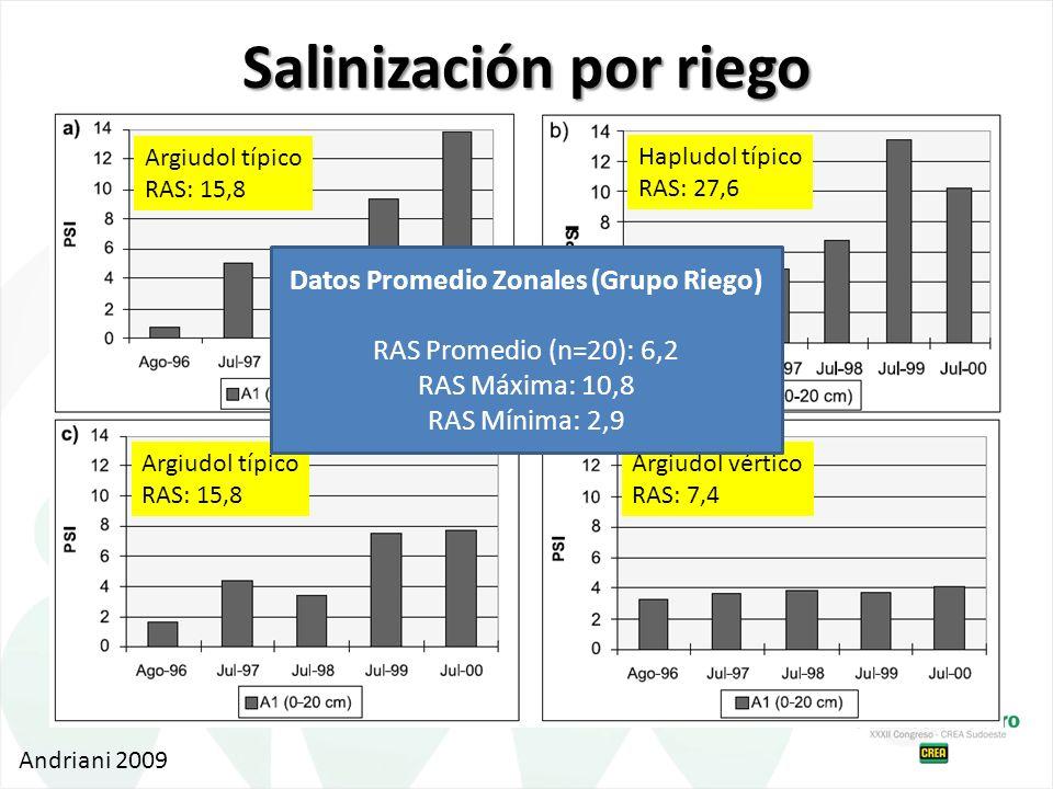 Argiudol típico RAS: 15,8 Hapludol típico RAS: 27,6 Argiudol típico RAS: 15,8 Argiudol vértico RAS: 7,4 Andriani 2009 Datos Promedio Zonales (Grupo Ri