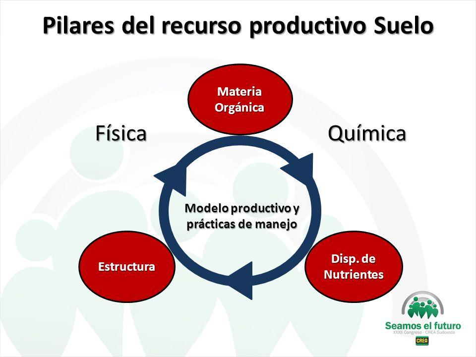 Pilares del recurso productivo Suelo Estructura Materia Orgánica Disp. de Nutrientes Modelo productivo y prácticas de manejo FísicaQuímica