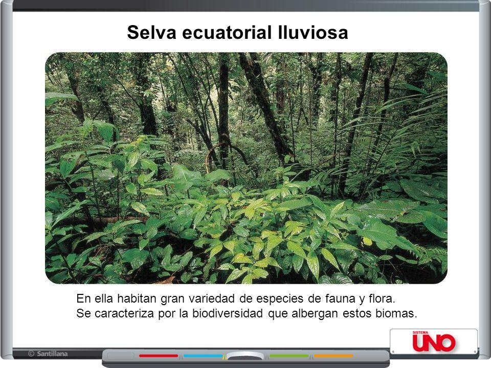 En ella habitan gran variedad de especies de fauna y flora.