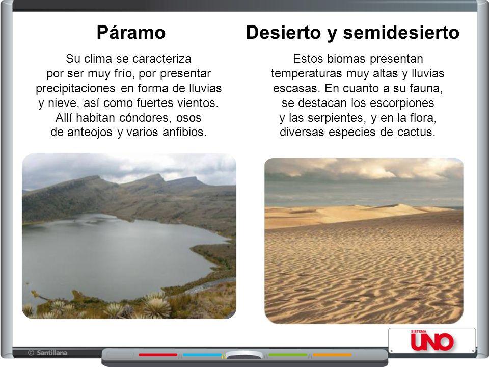 Desierto y semidesierto Estos biomas presentan temperaturas muy altas y lluvias escasas.