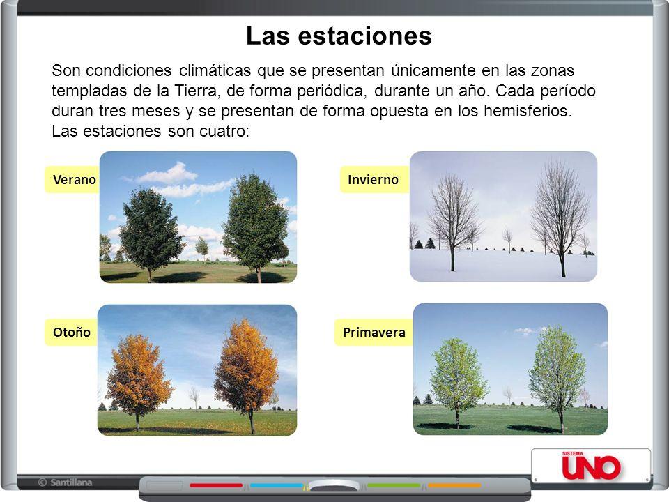 Las estaciones VeranoInvierno OtoñoPrimavera Son condiciones climáticas que se presentan únicamente en las zonas templadas de la Tierra, de forma periódica, durante un año.