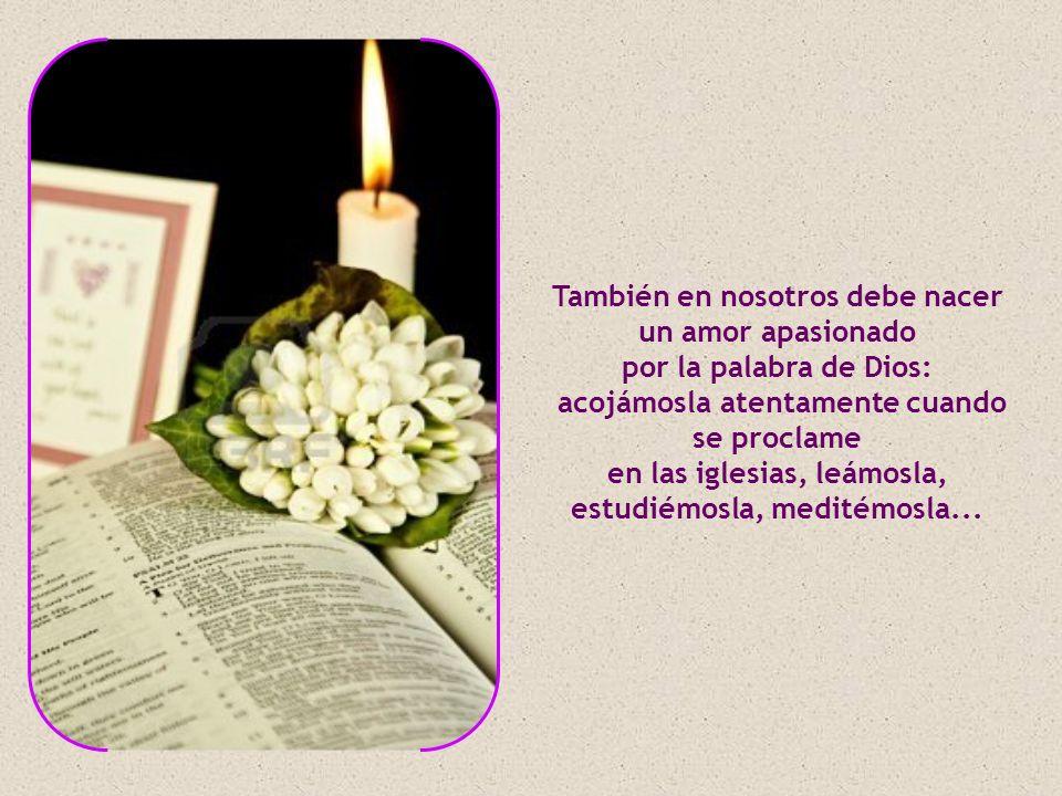 En este tiempo de Cuaresma en que nos preparamos a la gran fiesta de la Resurrección, debemos seguir de verdad la enseñanza del único Maestro y hacernos discípulos suyos.