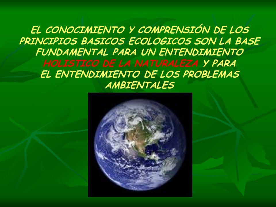 EL CONOCIMIENTO Y COMPRENSIÓN DE LOS PRINCIPIOS BASICOS ECOLOGICOS SON LA BASE FUNDAMENTAL PARA UN ENTENDIMIENTO HOLISTICO DE LA NATURALEZA Y PARA EL
